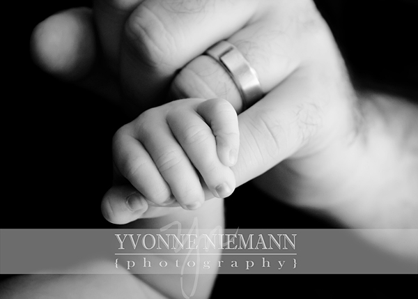 Meet Great Ben! | St Louis Newborn Photography% category