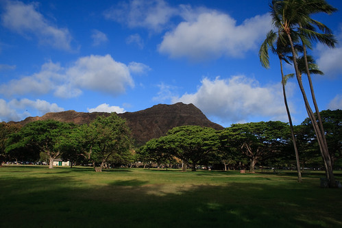 Diamond Head, Flat Trees, and Palm Trees