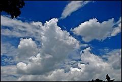 Polarized Clouds