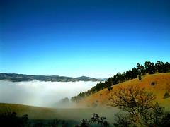 ...Voc... (...anna christina...) Tags: brazil minasgerais nature brasil natureza paisagem wonderland serradamantiqueira mataatlntica annachristina annachristinaoliveira
