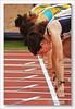 Campeonato de España Universitario de Atletismo 2010 (miguel68) Tags: athletics sanfernando cádiz 100m atletismo bahíasur cruzadasgold miguel68 sanfernando2010 atletismouniversitario