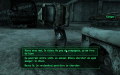 First encounter with Canigou/ Dogmeat
