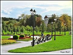 Tsaritsyno Park (Sugar Mind) Tags: life park travel parco tree verde nature alberi russia moscow natura sugar erba mind scenario pace viaggio lampioni mosca panchine tsaritsyno dipinto