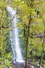 Erskine Falls (Rodney Topor) Tags: nature waterfall victoria lorne canonef50mmf18ii erskinefalls