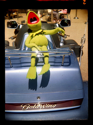 Kermit on a large motorcycle by pho-Tony
