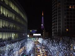 2009年 東京タワー