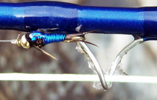 Blue Copper John