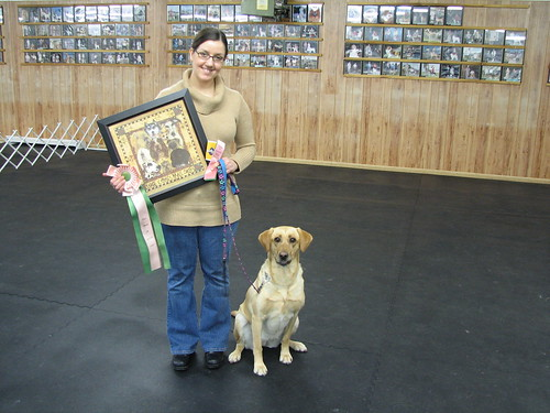 Obedience High Point Award