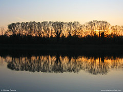Isola della Cona (Michele Catania) Tags: trees lake reflection water canon river landscape powershot friuliveneziagiulia absolutelystunningscapes michelecatania