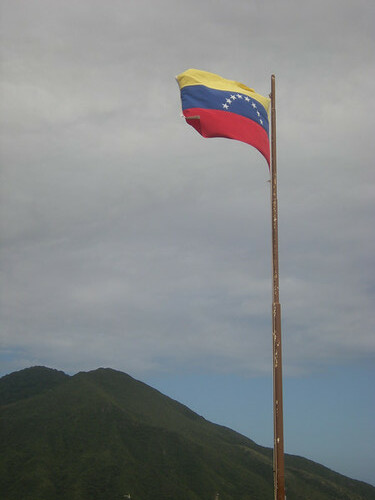 venezuelan fort flag
