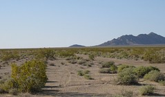 Rice Army Airfield future solar 0046a (DB's travels) Tags: california abandoned desert rice wwii ca62 armyairfield
