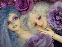 Byaku-en and Zhion (borometz) Tags: color art rose doll purple vampire gothic fantasy salida bjd    custom volks 13 bluebayou  bluerose sakaki balljointdoll   sd13 60cm mohairwig dollzone  seirei kyotenshi   zhion   byakuen