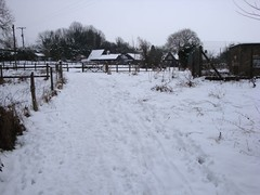 DSC01118 (edwardsgt) Tags: snow february tring 2009