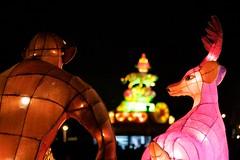 IMG_2294 (Brian-Su) Tags: festival taiwan taipei lantern