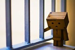 missing you (achew *Bokehmon*) Tags: 50mm robot amazon missing comic you box f14 sony alpha a300 danbo danboard  danboru danbowallpaper danboardwallpaper