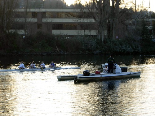 Rowers on the Ship Canal
