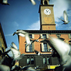 free are the birds - voli imprevedibili (cHr1st1an S images) Tags: street city windows sky italy bird clock 120 film window birds square freedom lomo lomography flickr pigeon pigeons free belltower belfry diana analogue reggioemilia analogic analogico colud passionphotography mywinner abigfive anawesomeshot theunforgettablepictures lomodiana flickrlovers chr1st1ans christiansorrentino