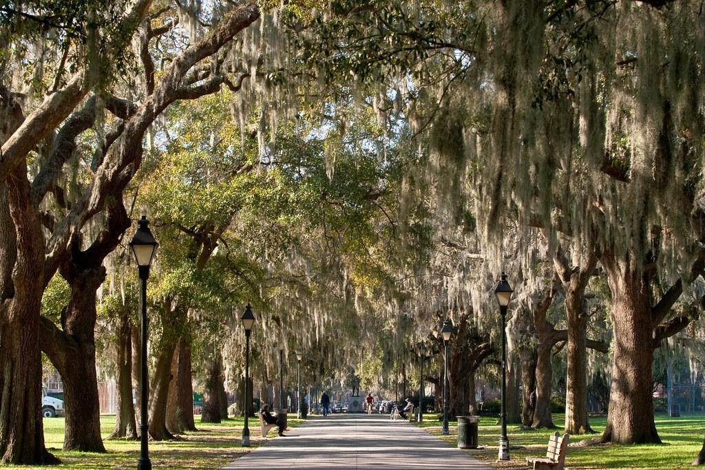 At Forsyth Park, Savannah GA