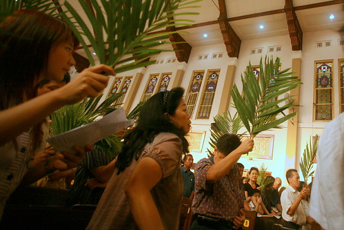 blessing of the palm