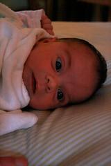 ophelia_2week2 (senorita_sandia) Tags: 2 weeks ophelia