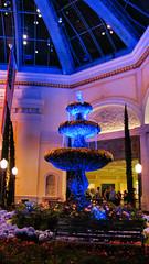 Bellagio Casino & Resort