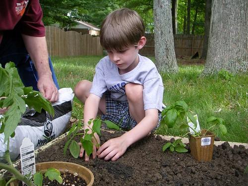 Jonmichael planting his bean plant