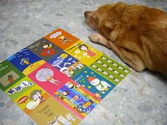 沒格 2009年明信片