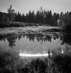 07_Summer_Solstice_chris_conrad (Chris Conrad, Moab, Utah) Tags: chris moon utah tracks moab conrad moontracks