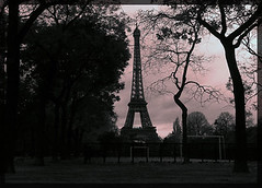 Paris (aliberrada) Tags: blackandwhite paris france tower field landscape tour eiffel toureffeil ife imfromearth