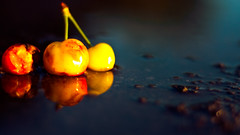 Cherries (rasenkantenstein) Tags: sun color colour reflection art texture wet water rain contrast reflections germany cherry puddle outside cherries focus bokeh outdoor magdeburg saturation sachsenanhalt rasenkantenstein