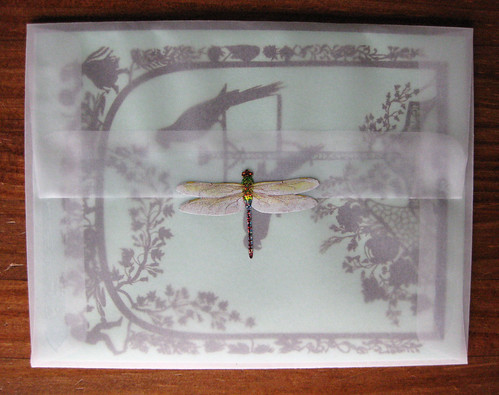 Jezebel card, dragonfly sticker