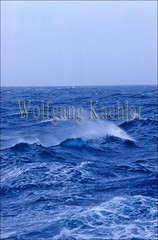 20008442 (wolfgangkaehler) Tags: ocean blue sea seascape water waves wave antarctica rough waterscape roughsea roughseas roughocean oceanscape