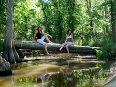 (tara_tearex) Tags: new trees girls green nature forest river log may northcarolina bern bestfriends havelock neuse canonsd780