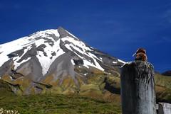 Ich am Mt Taranaki