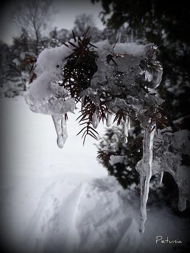 Vinterkunst