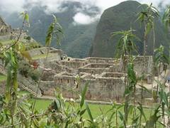 Cuzco - Machu Picchu (Más Lejos) Tags: peru machu picchu carnaval machupicchu puno latine perou maslejos amrique