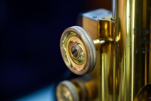 Leica APO-Macro-Elmarit-R 100mm f/2.8 (F-mount)