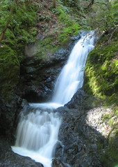 Waterfall Tour of Uvas Canyon County Park