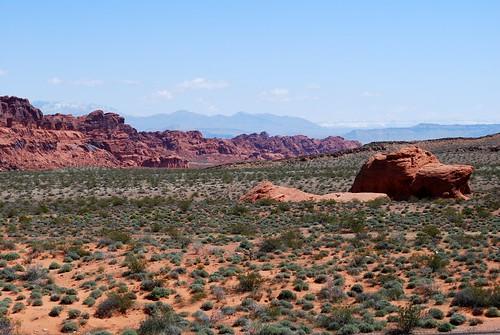 Red desert scene