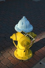Wet Paint (King Power Cinema) Tags: light wet arlington hydrant fire virginia paint afternoon late