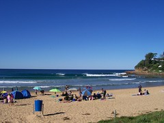 Avoca Beach Swell