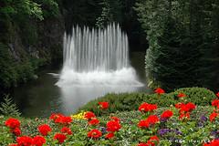 Fountain at Butchart Gardens - by Rob Huntley