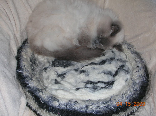 knitted/felted kitty bed