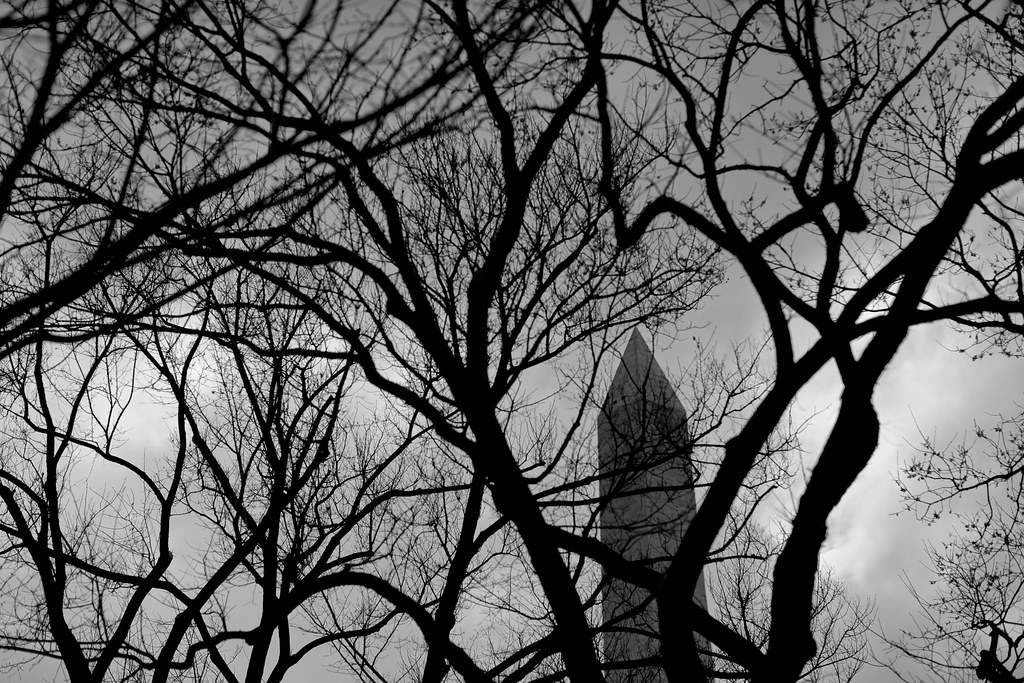 Grayscale D.C.  (1 of 6)