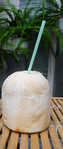 Coconut ready to drink.
