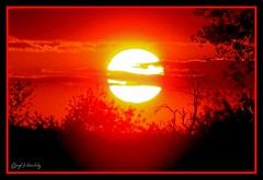 Guten Abend/Good evening//  (shaman_healing) Tags: sunset nature colors sonnenuntergang natur soe farben frnkischeschweiz franconianswitzerland