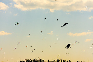 Flight of 1000 Kites