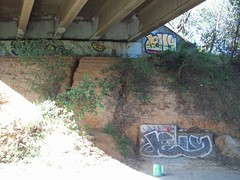 Art (tmrae) Tags: underpass graffiti auburn