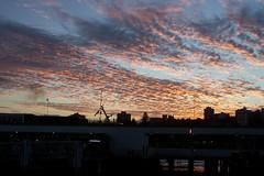 Sunset @ Manly, Sydney, Australie (leGuik) Tags: sunset beach ferry soleil harbour manly sydney plage australie couche