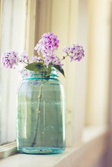 If a day goes by without my doing something related to photography, it's as though I've neglected something essential to my existence, as though I had forgotten to wake up. ({Emily}) Tags: soft lilac windowlight natureycrap shuttersisters emphotography emilymphotography thematernallens